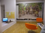 wallpaper vanuatu and congo video at fondoarte